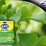 ATC Ginkgo Biloba the Brain Enhancer