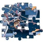 Why jigsaw puzzle is one of the best to educate your child at an early age?