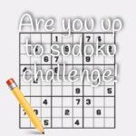 Are you up to sudoku challenge!