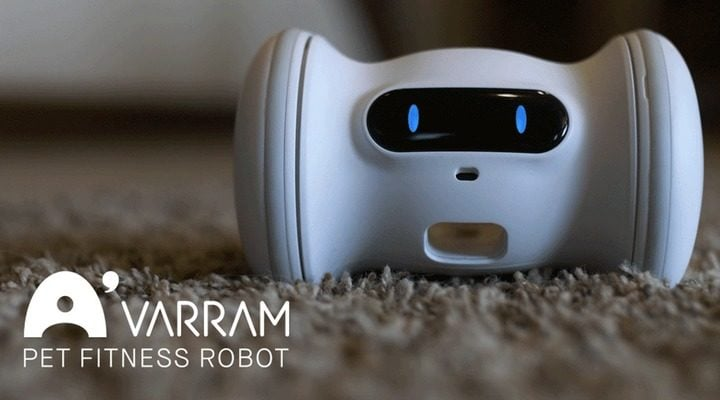 VARRAM Smart Pet Fitness Robot